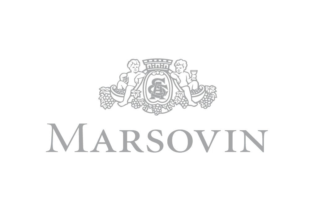 Brands__main_logo_Greyscale v1_Brands__main_logo__Marsovin